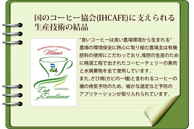 ホンジュラス・カップオブエクセレンス受賞珈琲豆