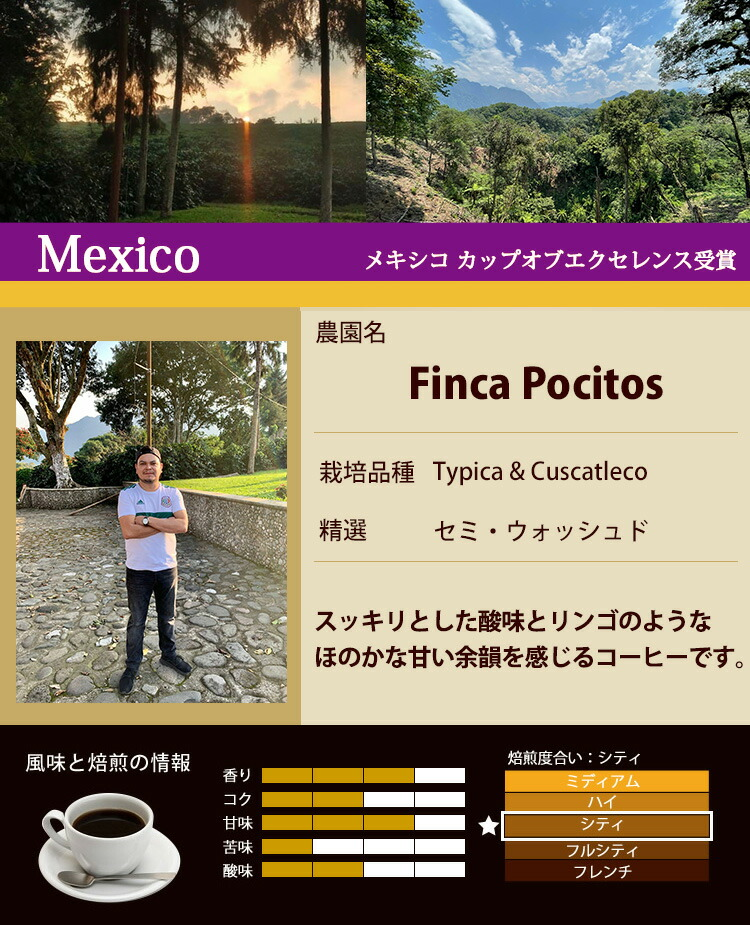 メキシコ・カップオブエクセレンス受賞珈琲豆