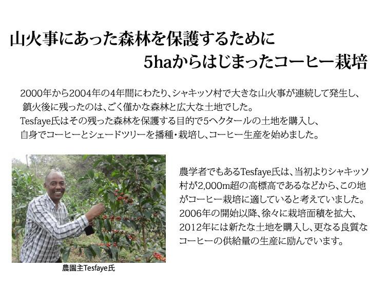 山火事にあった森林を保護するために5haからはじまったコーヒー栽培