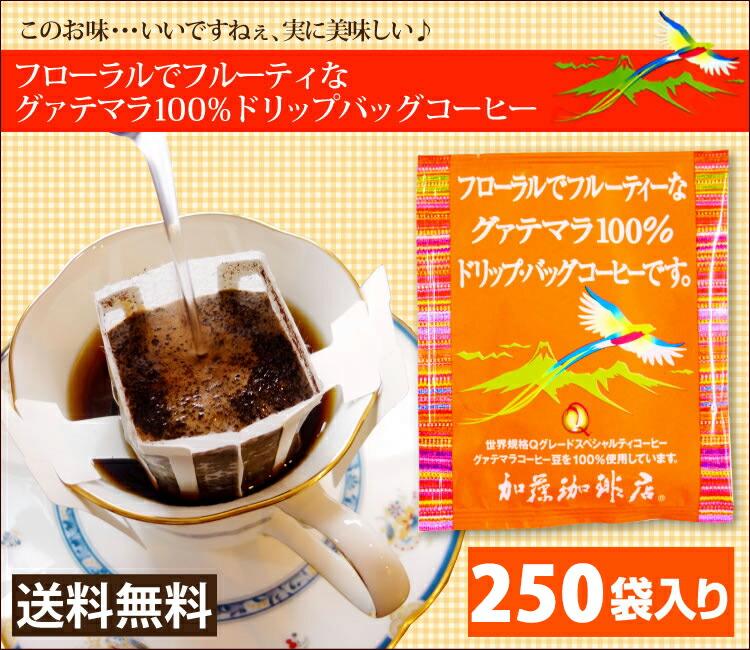 グァテマラドリップバッグコーヒー250袋