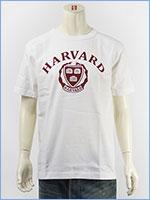 チャンピオン メイドインUSA T1011 半袖 プリント Tシャツ ハーバード大学 Champion MADE IN USA T1011 US T-SHIRT HARVARD UNIVERSITY C5-M302-019