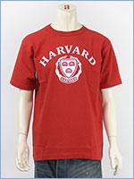 チャンピオン メイドインUSA T1011 半袖 プリント Tシャツ ハーバード大学 Champion MADE IN USA T1011 US T-SHIRT HARVARD UNIVERSITY C5-M302-970