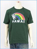 チャンピオン メイドインUSA T1011 半袖 プリント Tシャツ ハワイ大学 CHAMPION MADE IN USA T1011 US T-SHIRT UNIVERSITY OF HAWAII C5-P303-542