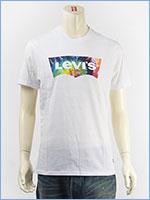 リーバイス バットウィング ロゴ グラフィック Tシャツ LEVI'S SS GRAPHIC TEE BATWING LOGO 22489-0162