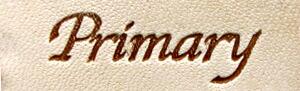 Primary(プライマリー)