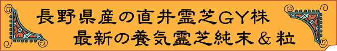 長野県産栽培の直井霊芝GY株・パワフル健康食品