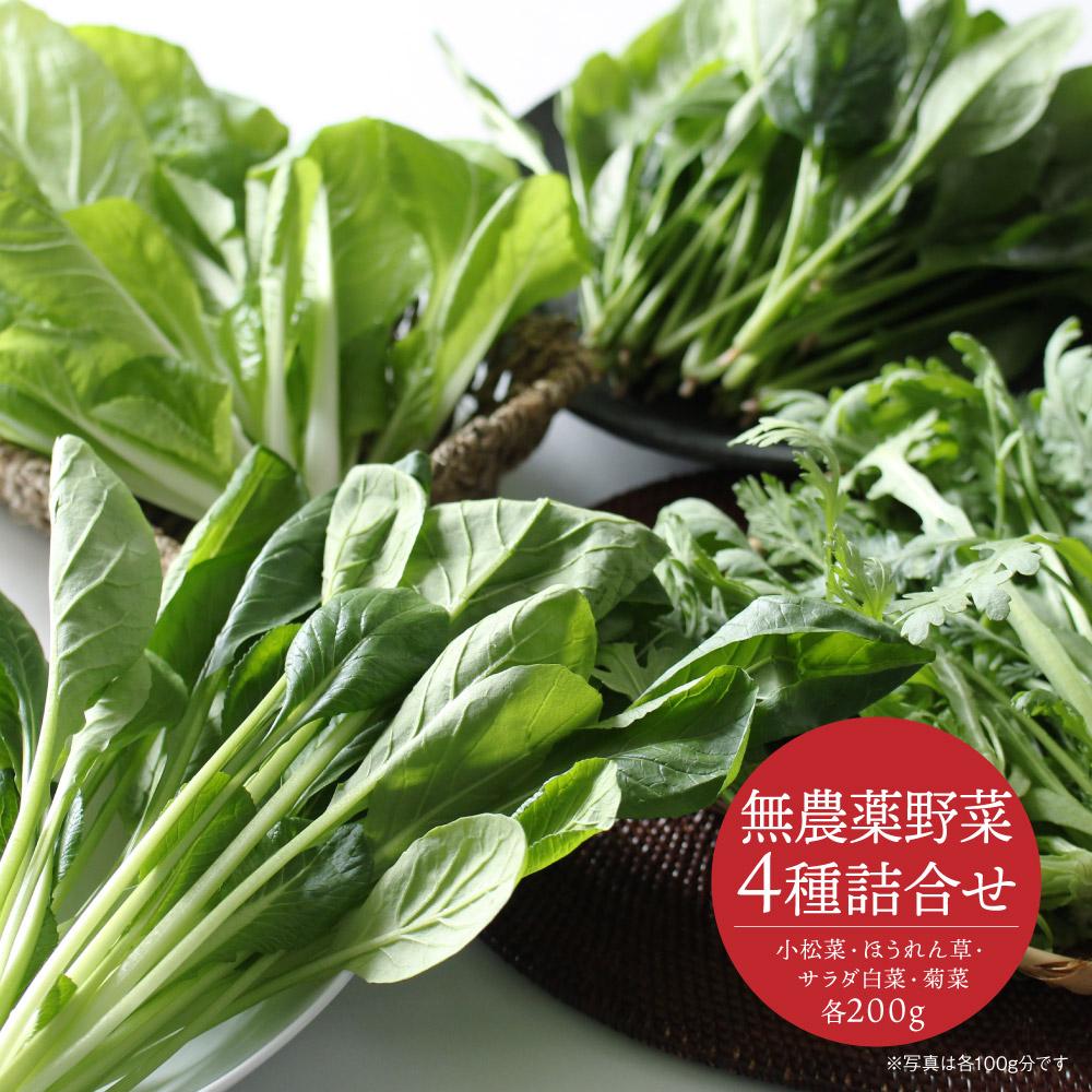 無農薬野菜4種詰め合わせ