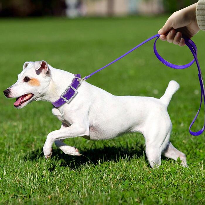 かわいい おしゃれ 首輪 胴輪 ハーネス 犬用首輪 ペット犬 猫