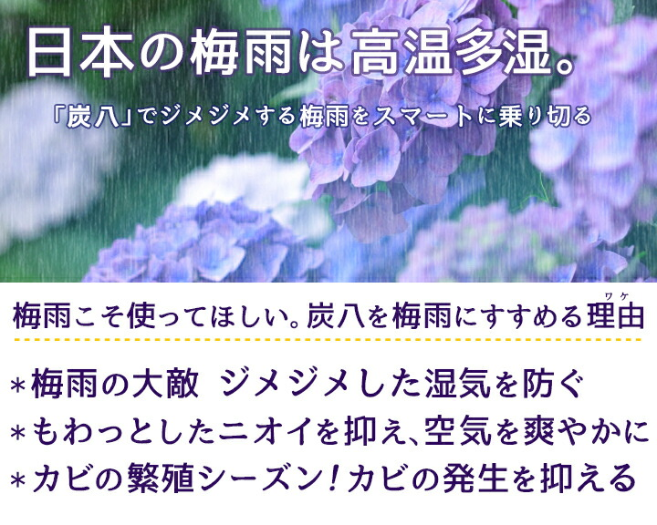 日本の梅雨は高温多湿