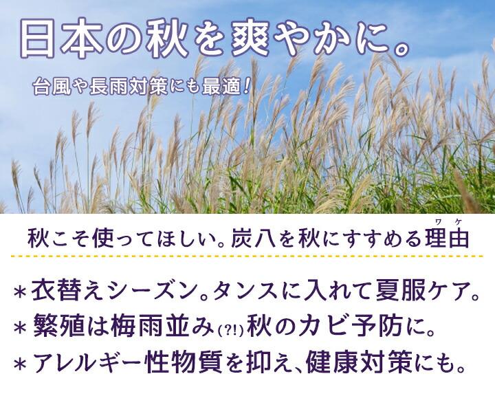 日本の秋を爽やかに