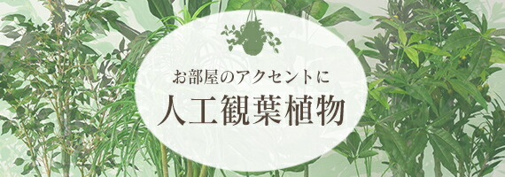 人工観葉植物特集