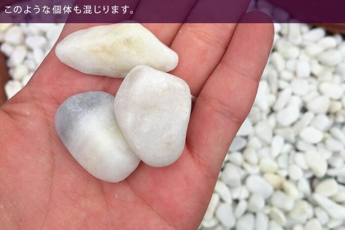 白玉砂利1.5cm