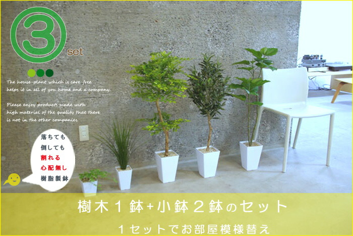 樹木3個セット