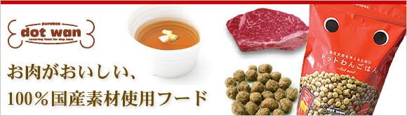 ドットわんスープ
