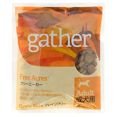 GATHER フリーエーカー