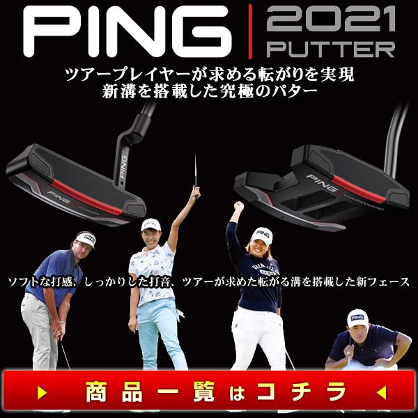 pn21-pingputter600