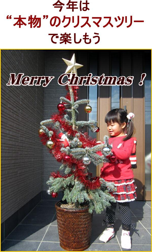 ホプシーでクリスマスを楽しもう!