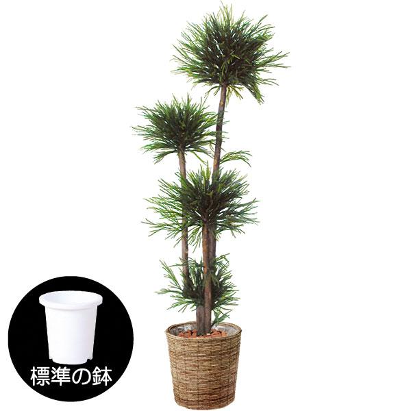 台杉の造花