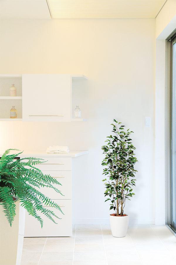 全高150cm程度の人工観葉植物イメージ