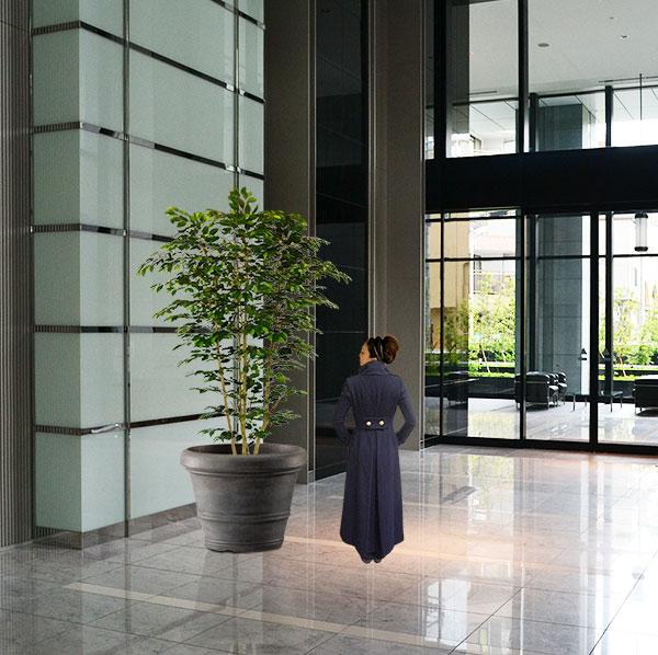 大型でワイドなリアルなベンジャミンの人工観葉植物
