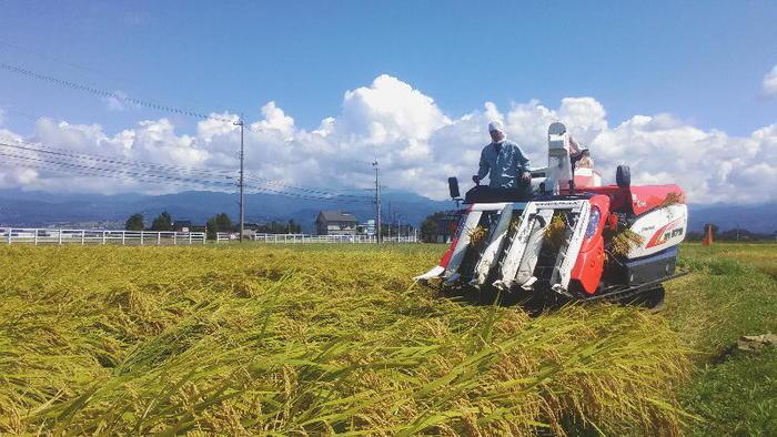 北アルプスの雪解け水「自然の恵み」が育んだ、安心・安全な国産米(富山県産)です。
