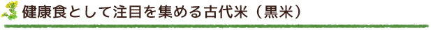 健康食として注目を集める古代米(黒米)
