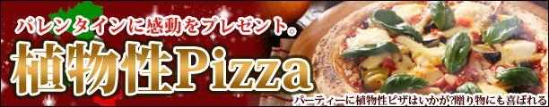 植物性ピザ