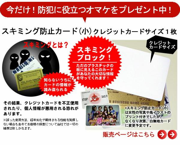 オマケ・スキミング防止カード(カードサイズ)