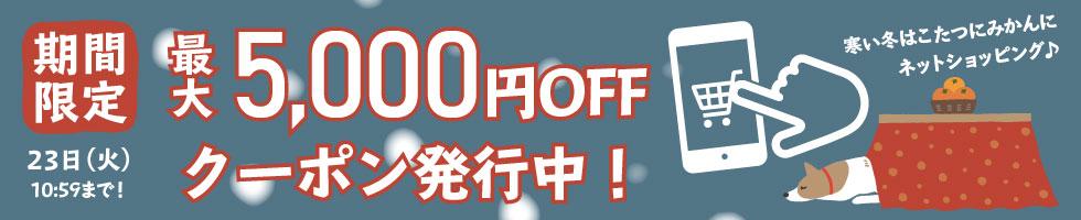 最大5,000円OFFクーポン