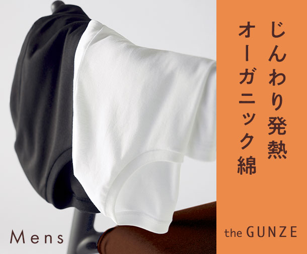 the GUNZE発熱綿