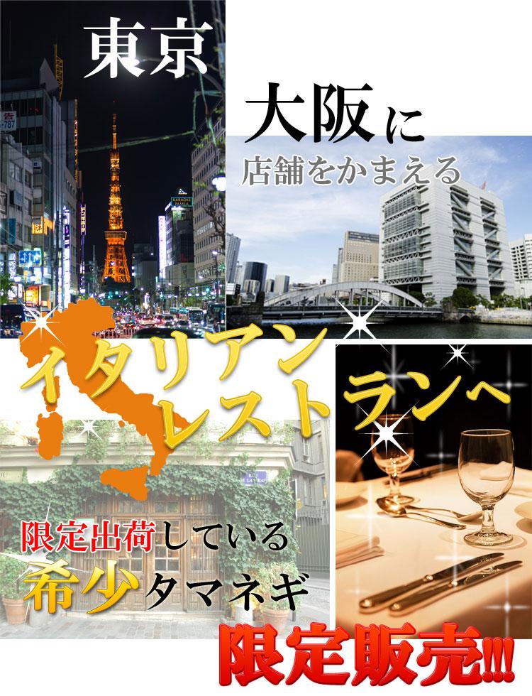 東京や大阪のイタリアンレストランへ限定出荷している希少タマネギ限定販売!