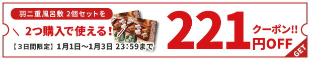 2つ購入で使える221円OFFクーポン