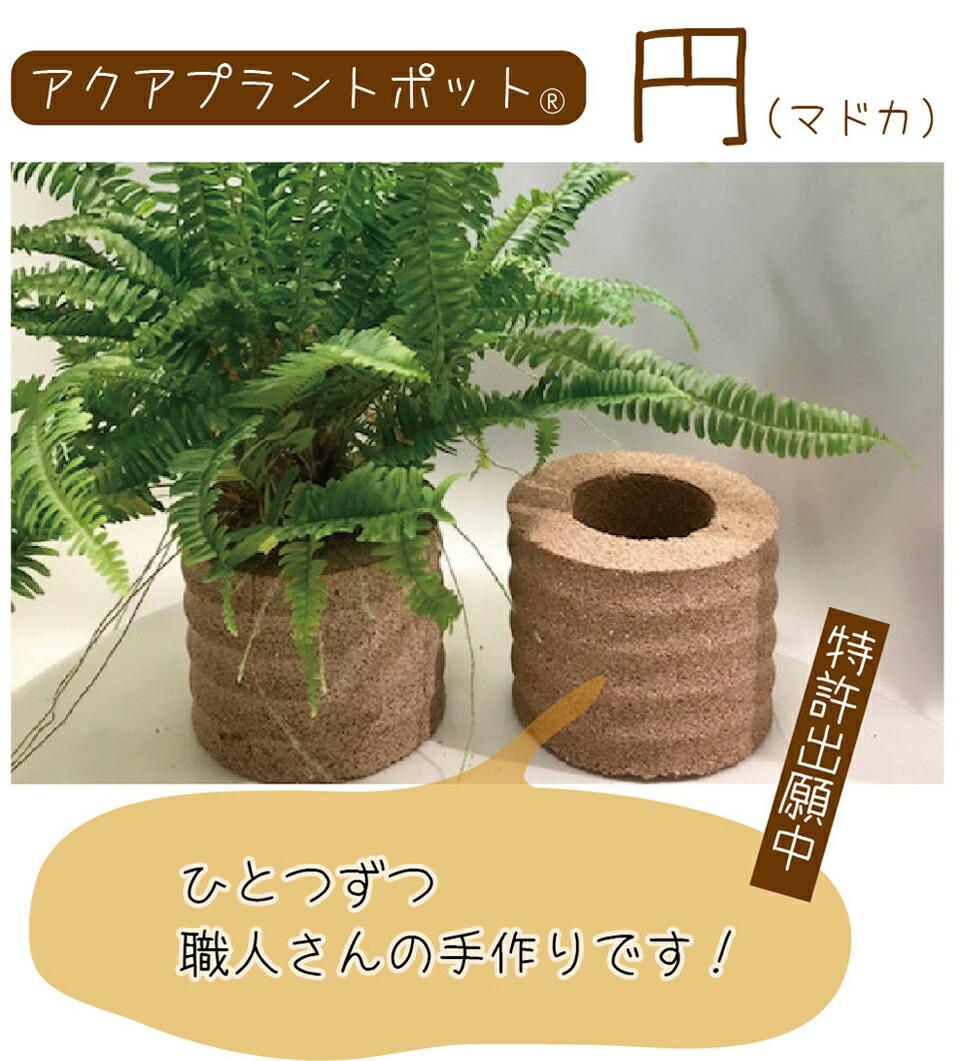 AQUA PLANT POT(アクアプラントポット)円(マドカ))L
