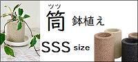 アクアプラントポット 筒 鉢植えSSS