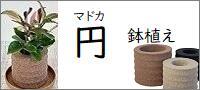 アクアプラントポット 円(マドカ)鉢植え【M/L】