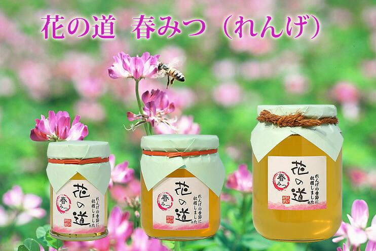 国産蜂蜜 花の道 春みつ