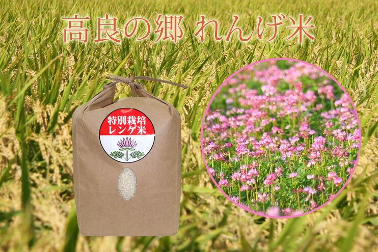 イメージ画像:高良の郷れんげ米
