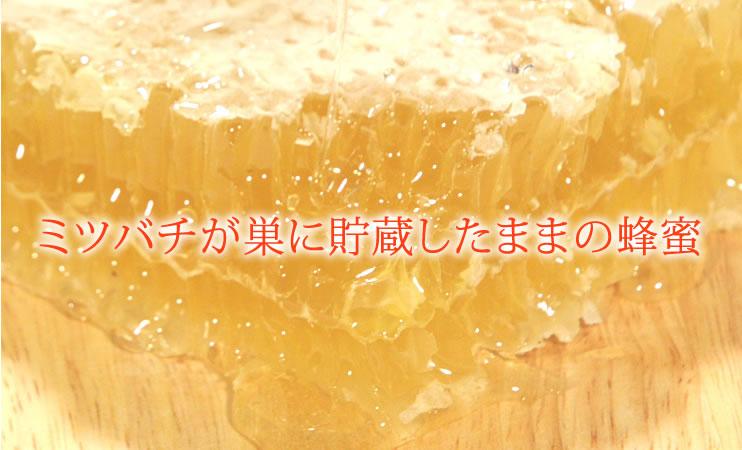 ミツバチが巣に貯蔵したままの蜂蜜 巣みつ(巣蜜・コムハニー)
