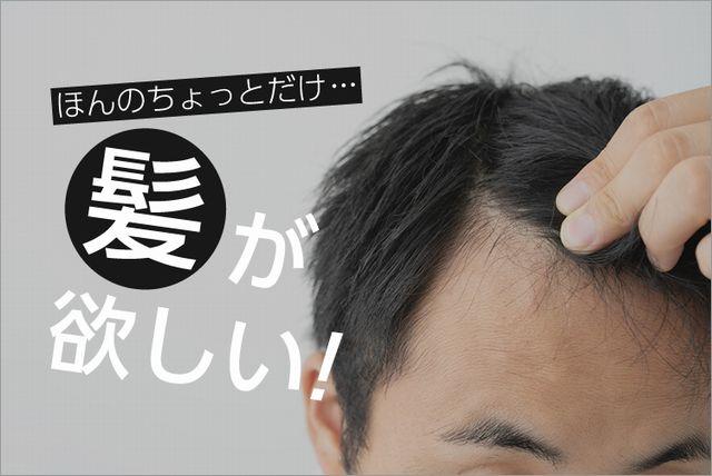 髪が欲しい