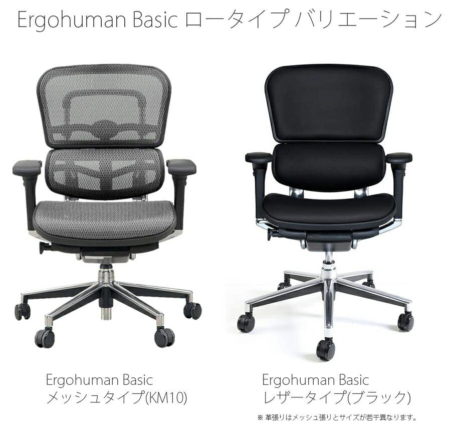 【正規品】エルゴヒューマン ベーシック ロータイプ ergohuman basic チェア ビジネスチェア オフィスチェア キャスター アーム付 調節機能 メッシュ レザー EH-LAM/EH-LAL