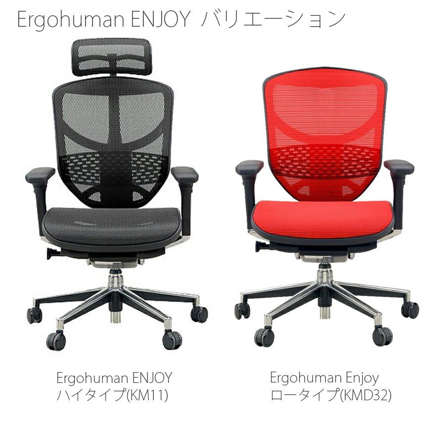 【正規品】エルゴヒューマン エンジョイ ハイタイプ/ロータイプ ergohuman enjoy チェア ビジネスチェア オフィスチェア キャスター ヘッドレスト アーム付 調節機能 メッシ EJ-HAM/EJ-LAM