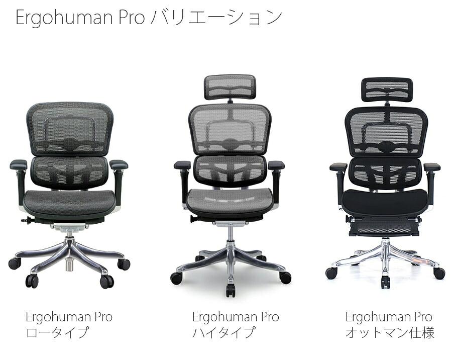【正規品】エルゴヒューマン プロ ergohuman pro チェア ビジネスチェア オフィスチェア キャスター ヘッドレスト オットマン アーム付 調節機能 メッシュ EHP-LPL/EHP-HAM/EHP-LAM