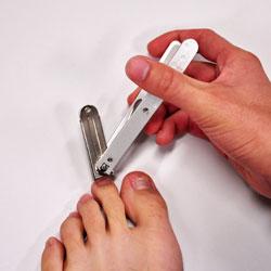 コフの爪切り1