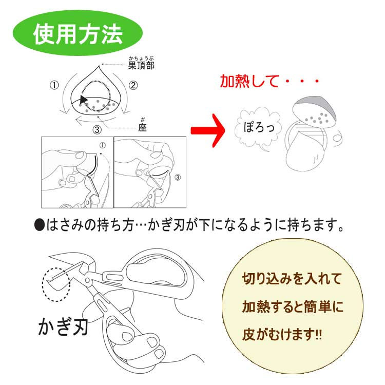 名入れ対応/栗皮剥き/はさみ/中津川/刃物市場
