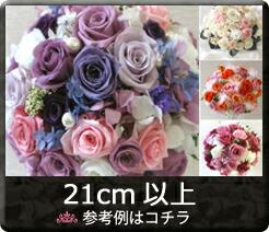 Φ21〜25cm