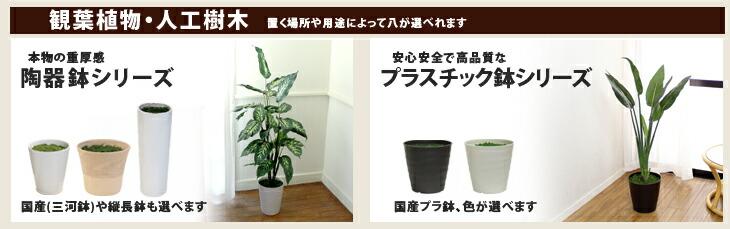 フロアタイプグリーン,人工樹木,人工観葉植物,天使の植物,消臭,抗菌