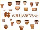 鉢の素材の選び方