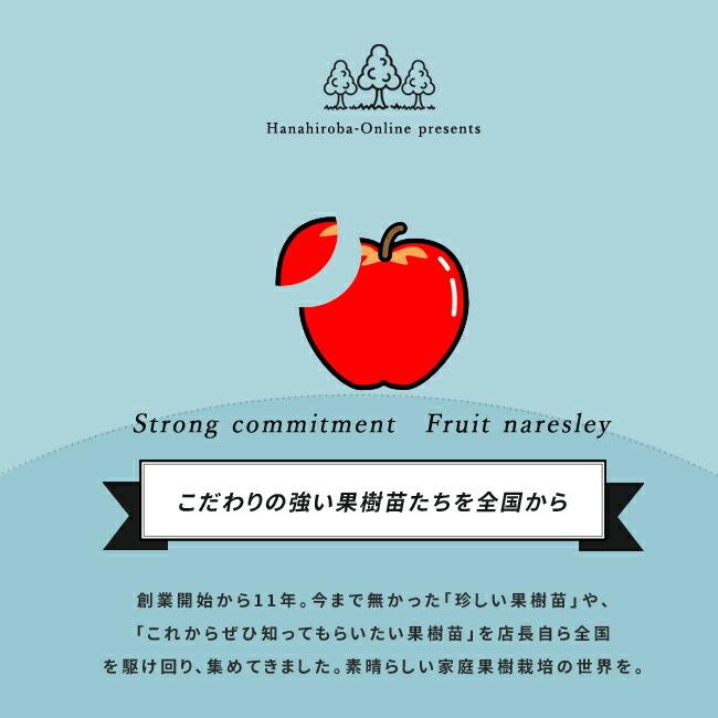 おすすめの果樹