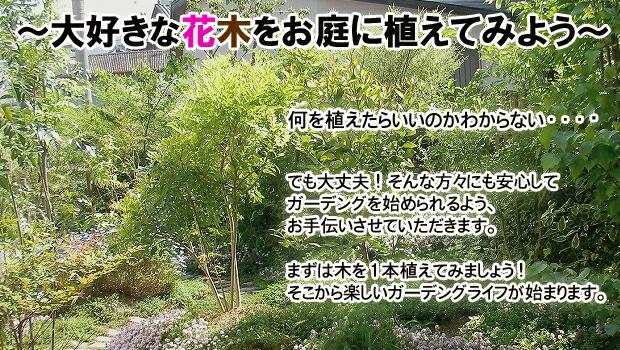 何を植えてらいいかわからない方も大丈夫!ステキなお庭作りをサポートします!まずは木を植えることからはじめましょう!
