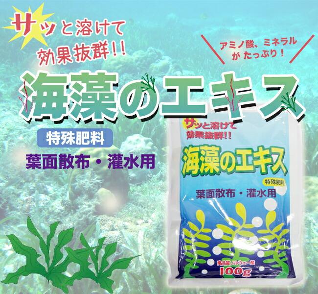 海藻のエキス バラや植物に全般にお使いいただけます。